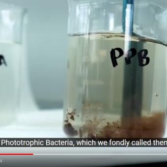 PPB Video Screenshot